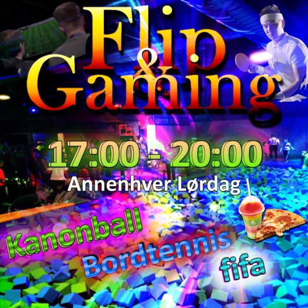 flip and gaming 17 - 20