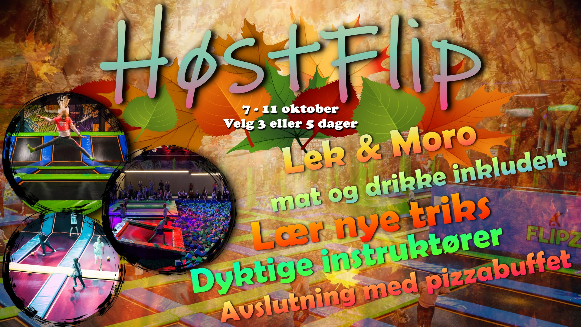 hostflip-1920-1081